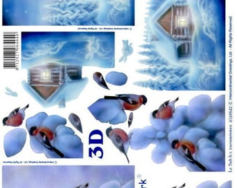 145 - Image sheet by cutting Robin in the snow