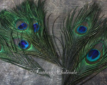 Small Peacock Feathers Iridescent Green Craft Feathers Millinery Weddings Feather Accessories, Pack of 8 Trimmed to 8""