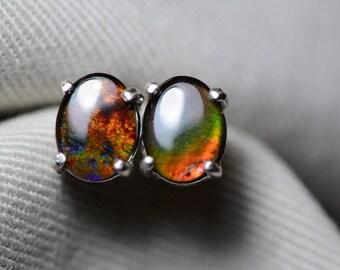 Ammolite Earrings, Ammolite Stud Earrings, Sterling Silver, 8x6mm Oval Cabochon, Alberta Canada Jewelry Jewellery, Pair #4