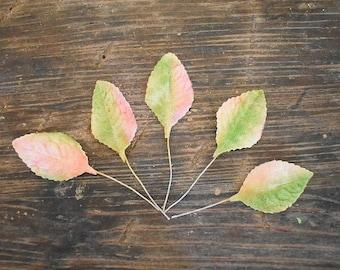 Set of 5 vintage velvet millinery leaves - pink and green
