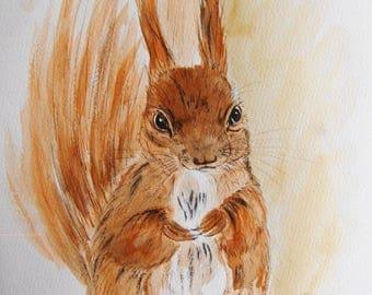 ecureuil, animaux, nature, foret, nature, dessin encre