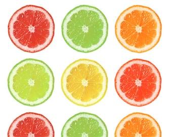 Citrus Printable 1-Inch Circles / Bottlecap Images / Slices of Lemon, Lime, Grapefruit, Orange / Food, Fruit graphics / Digital Collage