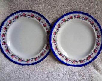 Vintage China Plates by Furnival's England