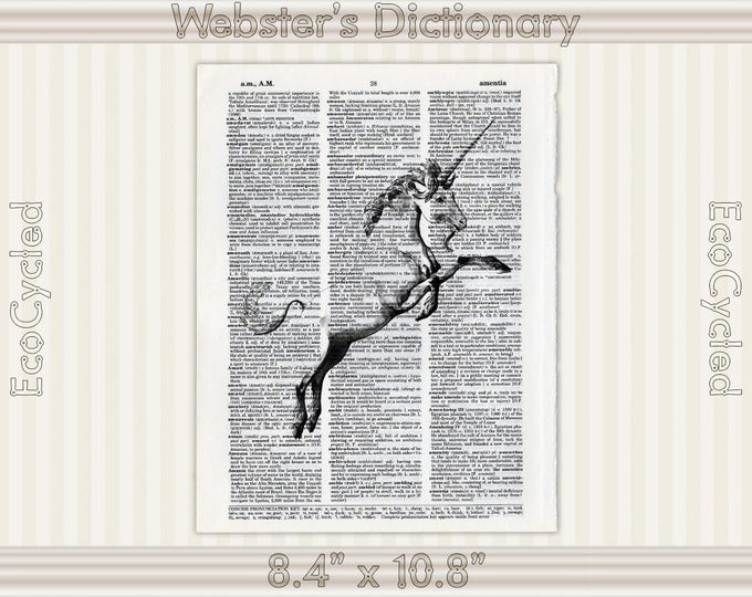 Unicorn Jumping 3 on Vintage Upcycled Dictionary Art Print Book Art Print Recycled Mythical Beast bookworm gift unicorn art book lover art