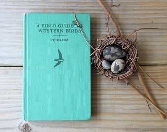 Retro rustic vintage field guide / Western birds birding book / naturalist gift idea / ornitology / nature book / 100th meridian west birds