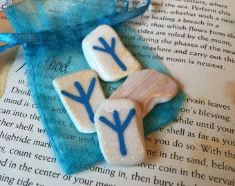 Protection Rune Charm & Pouch. Vikings Algiz Rune Norse Talisman Seashell Amulet