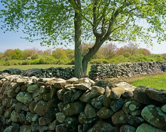 Stone Wall, North Kingstown, Rhode Island