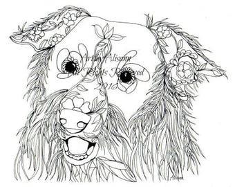 Border Collie  - Digital Download - Dog Art with Doodles