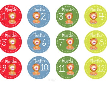 Monthly Stickers Boys Baby Month Stickers Baby Monthly Stickers Lions Baby Shower Gift