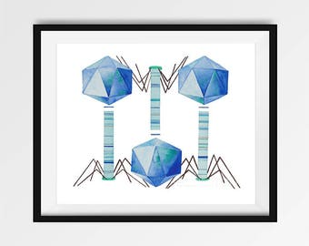 Bacteriophage, Watercolor Print, Science Art, Virus, Microbiology, giclee print, Science decor, biology art, science gift, bacteria, print