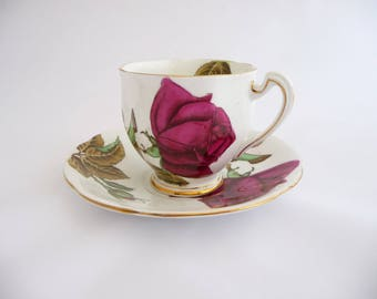 Royal Standard Cup and Saucer English Rose