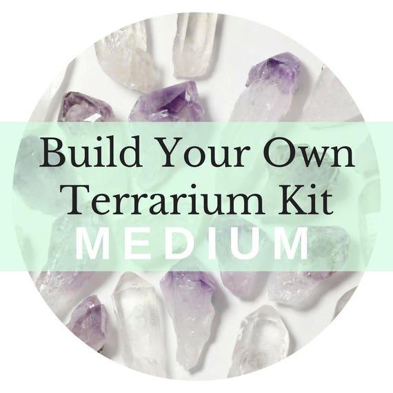 Build Your Own Air Plant Terrarium Kit || Medium || Amethyst, Desert Rose, Geode, Pyrite, Rose Quartz, Clear Quartz