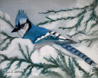 Winter Bluejay Greeting Card