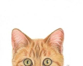 Cat Art, Orange Cat Art, Orange Tabby Cat, Orange Cat Peek A Boo