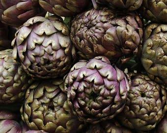 "Purple Artichoke ""Romanesco Artichoke"" 12+ Seeds"