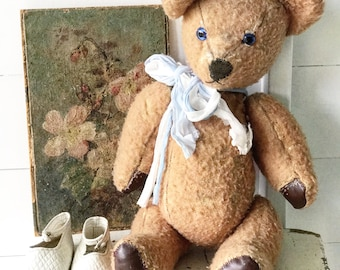 A lovely vintage teddy bear