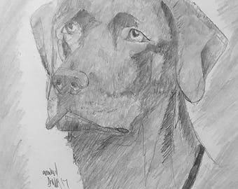 Graphite Portrait of Any Pet