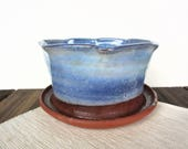 Small blue ceramic plante...
