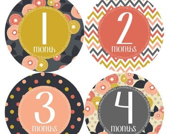 Monthly Baby Stickers Baby Month Stickers Baby Girl Month Stickers Monthly Photo Stickers Monthly Milestone Stickers 385