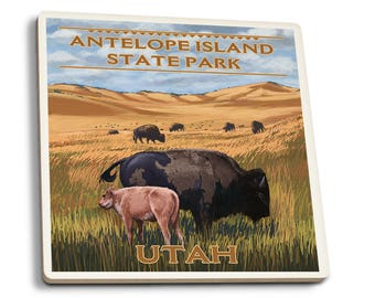 Antelope Island UT Bison and Calf LP Artwork (Set of 4 Ceramic Coasters)