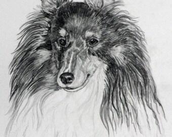 """4 Sheltie Notecards w/ envelopes  5.5 x 4.25 , """"Tricolor Sheltie"""",  Blank, Handmade, DOG LOVER GIFT, Hand Drawn Card, Sheltie Art"""