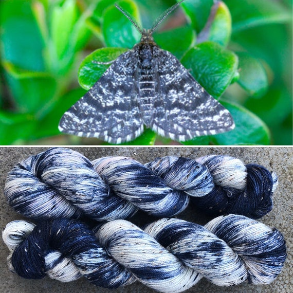 Blue Mountain Moth Donegal Sock, speckled merino 4ply yarn