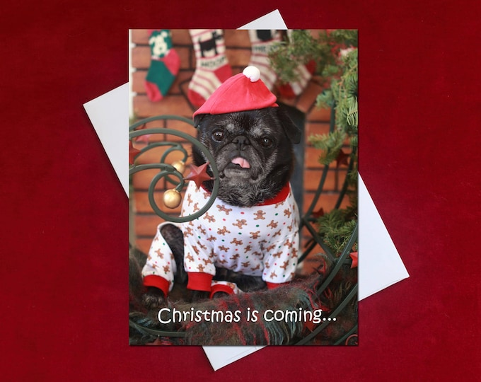 NEW Funny Holiday Card -Christmas is Coming - Pug Holiday Card - 5x7
