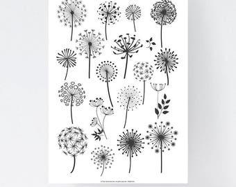 Digital Poster - Dandelion Flowers - Download