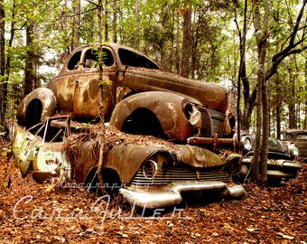 1940 Ford Coupe and 1957 Plymouth Belvedere Stacked in the Woods Photograph