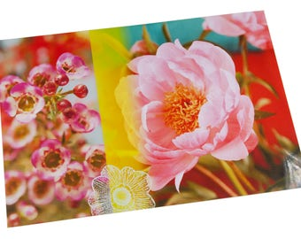 Laminated placemat pink Peony and wax
