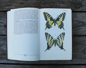 Butterflies & Moths - With 98 Beautiful Colour Plates - Artist Cornelio (In Russian) - Hardcover - 1986 Vintage Soviet Book Entomology Print