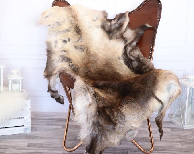 Reindeer Hide | Reindeer Rug | Reindeer Skin | Throw XL EXTTRA LARGE  - Scandinavian Style #1RE12