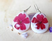 Burgundy verbana resin flower sterling silver earrings