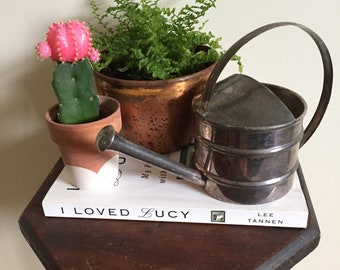 Adorable small watering can