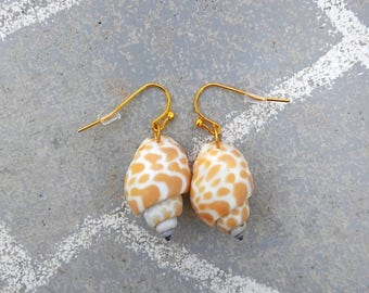 orange seashell earrings