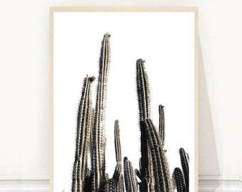 Cactus Print, Cactus Wall Art, Minimalist Print, Printable Art, Digital Download, Wall Decor