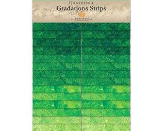 Northcott Gradations Stonehenge Strips - Rainforest 2 1/2 in strips
