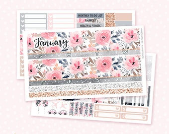 January Monthly View Sticker Kit - 3 sheets MATTE REMOVABLE paper / for the Vertical Erin Condren