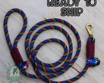 READY to SHIP! 8FT Lite-Brite Leash || Rock Climbing Rope Dog Leash || Handmade in the USA