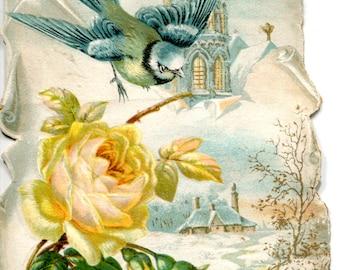 Chromo, snowy landscape, bird and rose