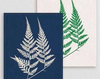 Classic Fern I- Botanical Decor- Botanical Gifts- Prints for Decor- Botanical Art- Ferns- Nature -Vintage -Vintage Prints -Vintage Art