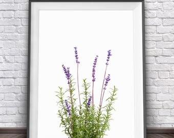 Lavender Wall Art lavender art | etsy