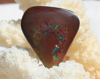 Nice Koroit Flash Opal 4.5 gram Cabochon (15)