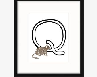 Q is for Quoll Print - Watercolor Quoll, Letter Q Art
