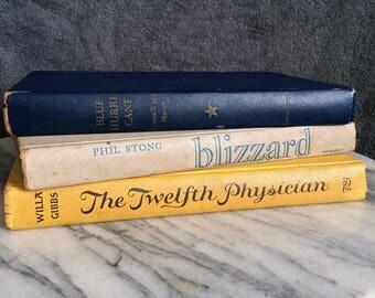 Vintage Book Home Decor Bundle / Coffee Table Books / Decorative Books / Blue Cream and Yellow Books / Book Bundle