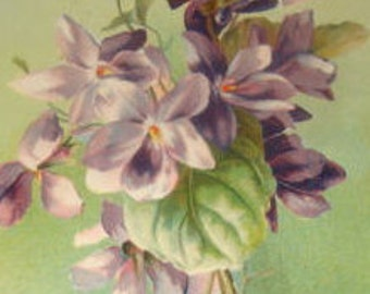 Pretty Vintage Floral Postcard