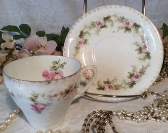 Bavarian Teacup and Saucer, Pink Roses