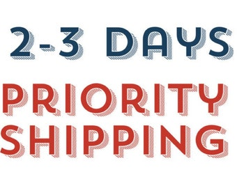 PRIORITY SHIPPING 2-3 days shipping - This shipping is just an upgrade please message me before purchase.
