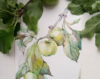 Apple Original Watercolor Painting, Food Art,  Kitchen Art, Fruit Wall Art, Apple Kitchen Decor, Gift for Her, fruit painting, gift idea