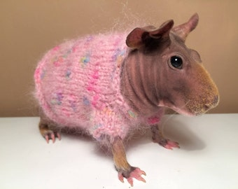 Guinea pig dress
